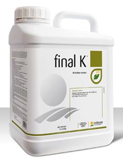 Final K