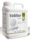 tradebor