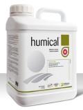humical