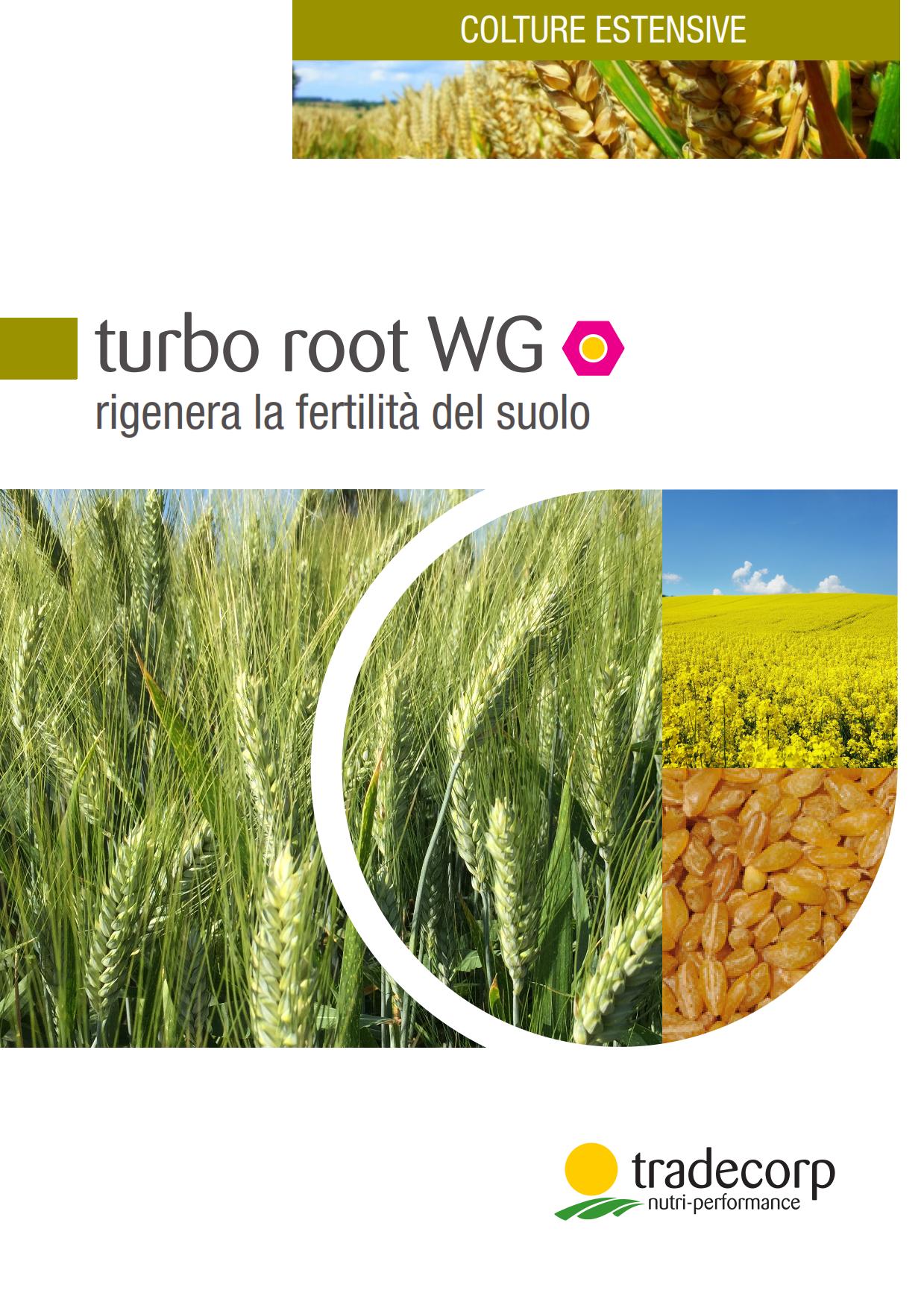turboroot_estensive2016_001