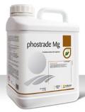 phostrade Mg