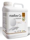 maxflow Ca