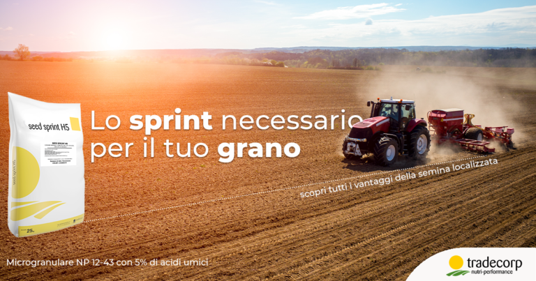 Seed Sprint H5 cereali